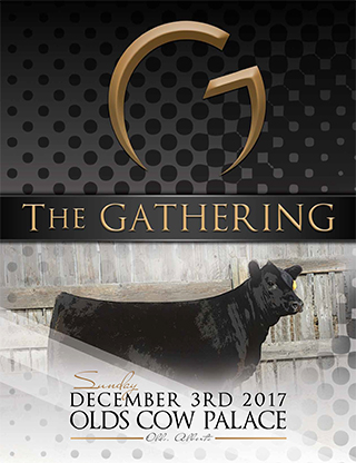 GatheringSale_catalog2017_web-1