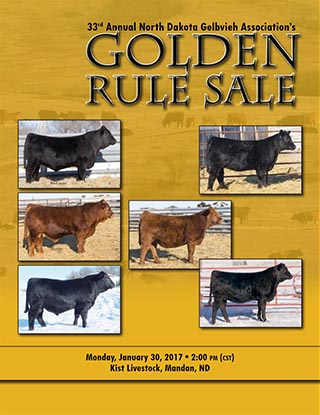 ndga-golden-rule
