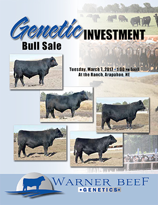 17WarnerBeefGenetics_salebook_FINALlores-1