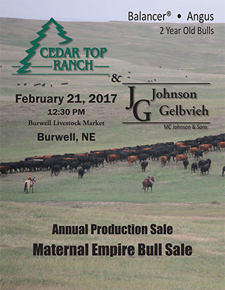 Cedar_Top_Ranch_2017_sale_catalog-1