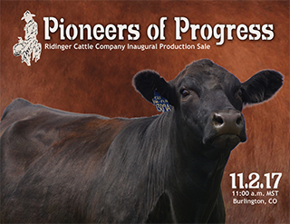 2017 Pioneers of Progress-catalog-HR final-1