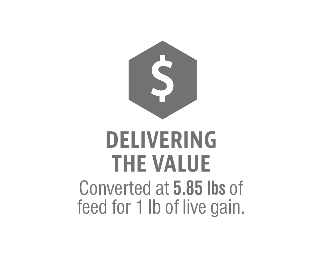 ValueGraphic