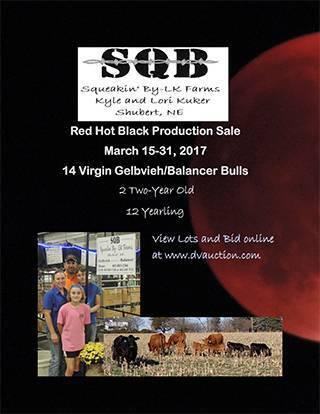 2017 SQB Sale Bulls 3-1