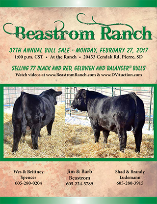 Beastrom-2017 bull sale catalog-final-LR-1