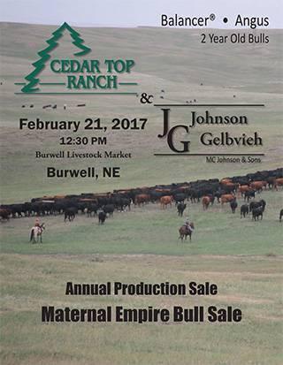 Cedar_Top_Ranch_2017_sale_catalog-1