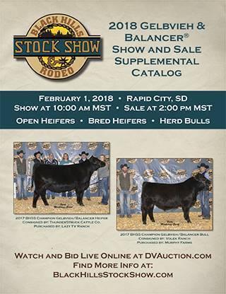 Black Hill Stock Show Gelbvieh Sale-1