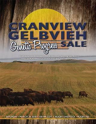 2018 Cranview Gelbvieh Catalog Web-1